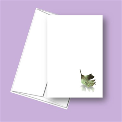 RTS 5301 Embossed Note Cards